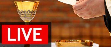 NEW! – Live Stream Mass & Witness Talks